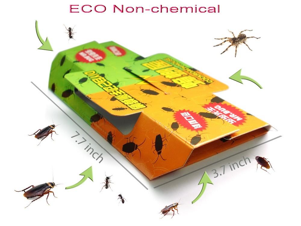 Bugs size ECO