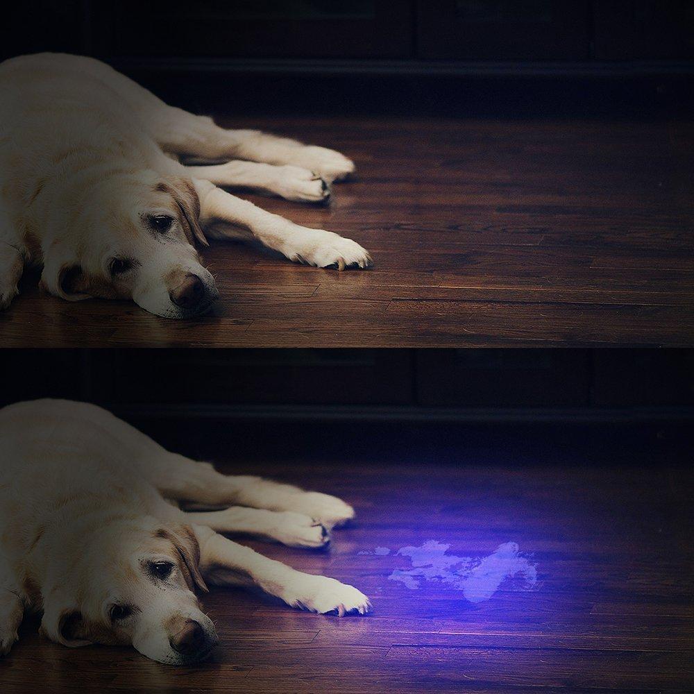 100led UV blacklight flashlight (4)