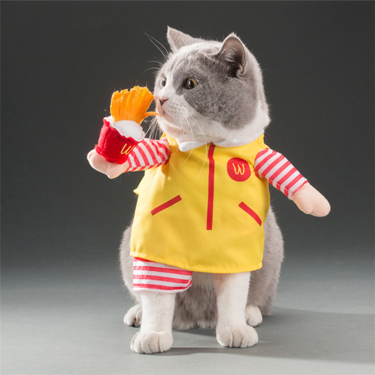 Cats Clothes (1)