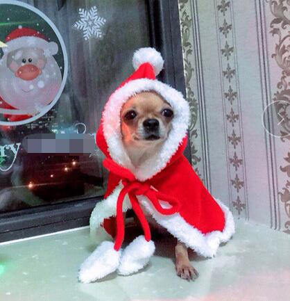 Christmas Pet Dog Red Hooded Cloak Cape Fashion Dog Cat Puppy Shawl Costumes With Hat Coat Santa Claus Clothes Gifts Pet Accessories 2018