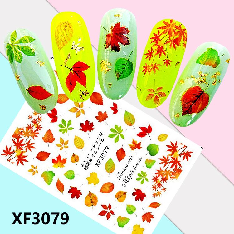 XF3079-1