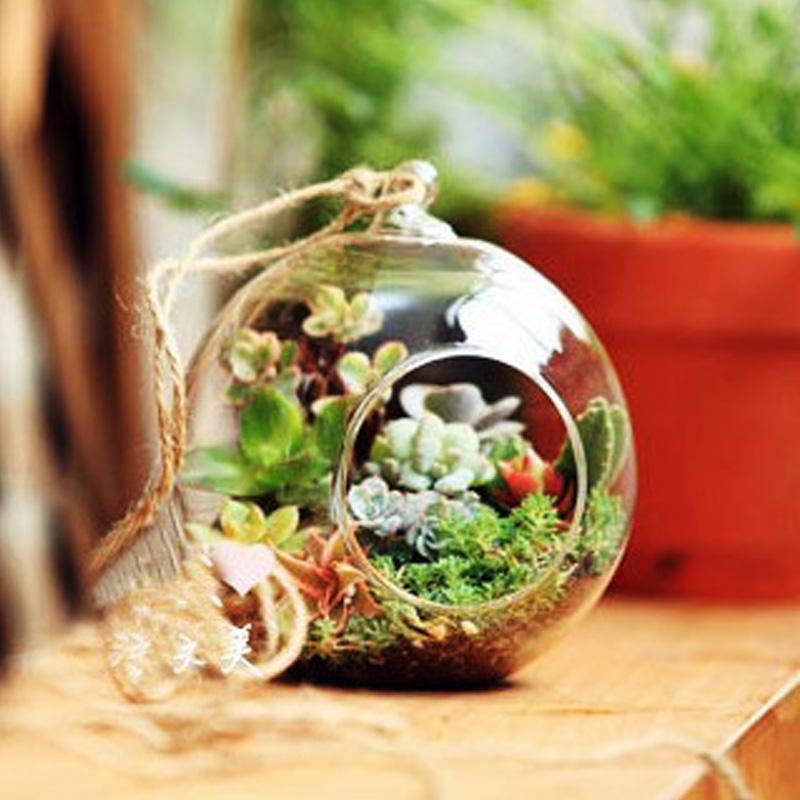 Hängend Glas Vase Blumenvase Pflanze Glas Wandvase 12cm Kugel Form