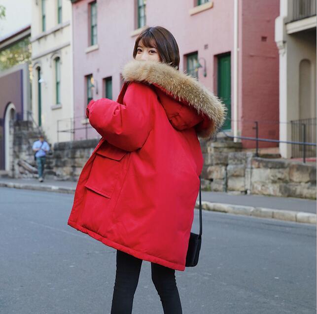 ... Abrigo de color Moda para mujer Invierno Prendas de abrigo  Adelgazamiento delgado Calidad de algodón Color ... b91dcf19aa40