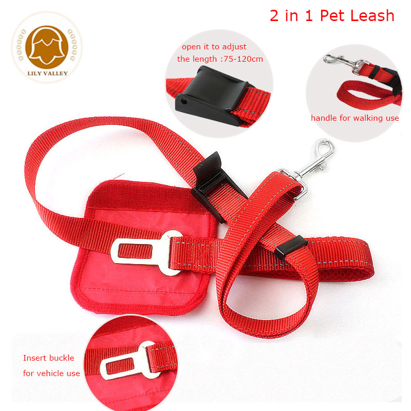 dog-walking-vehicle-leash