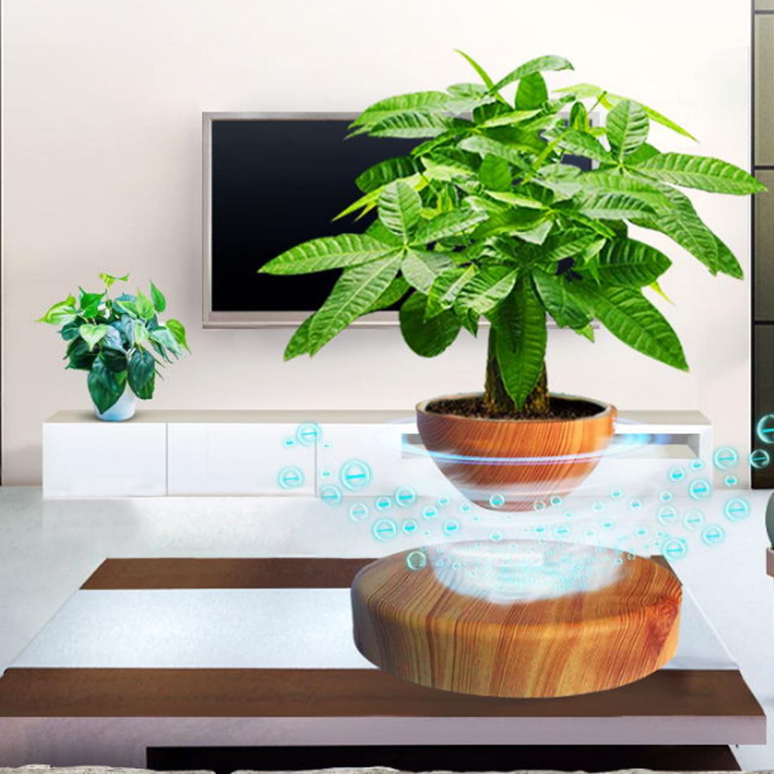 Potted Plant Ornaments Creative Magnetic Levitation Air Bonsai Art Wood Grain With EU Plug Geomancy Office Table Home Decor