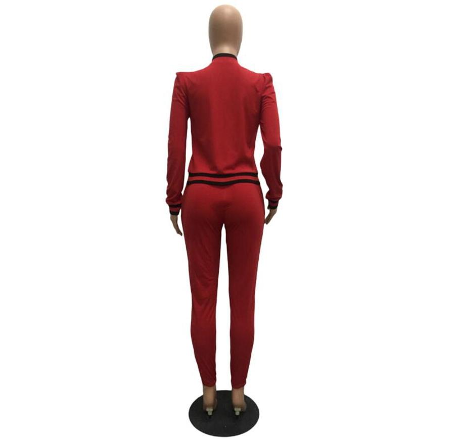 WAN XIANG YUAN Women Sportswear 2017 Autumn Long Sleeve Women 2 Piece Set Slim Pants Suits +Hooded Sets Women Suit 101712