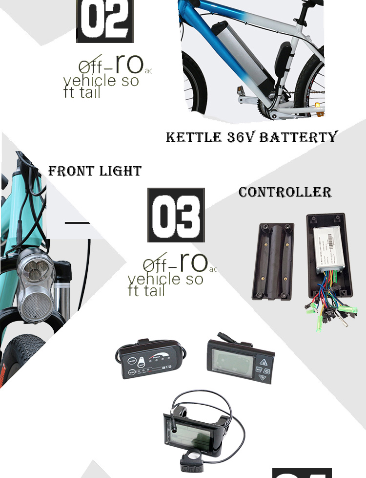 electric bike kit (4)