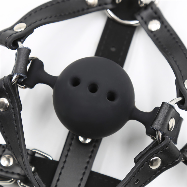 Harness Ball Gag Atmungsaktive Silikon Mundknebel mit Nasenhaken Bdsm Bondage Gear Fetisch Spielen Schwarz Rot Rosa Adult Toys für Frauen