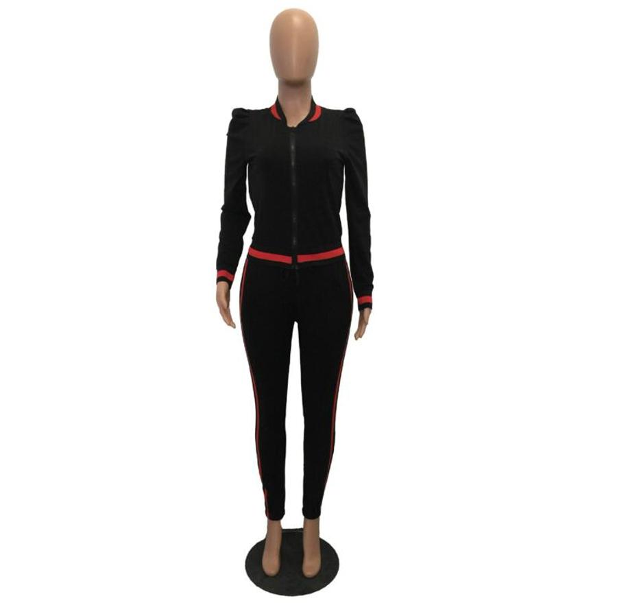 WAN XIANG YUAN Women Sportswear 2017 Autumn Long Sleeve Women 2 Piece Set Slim Pants Suits +Hooded Sets Women Suit 101707