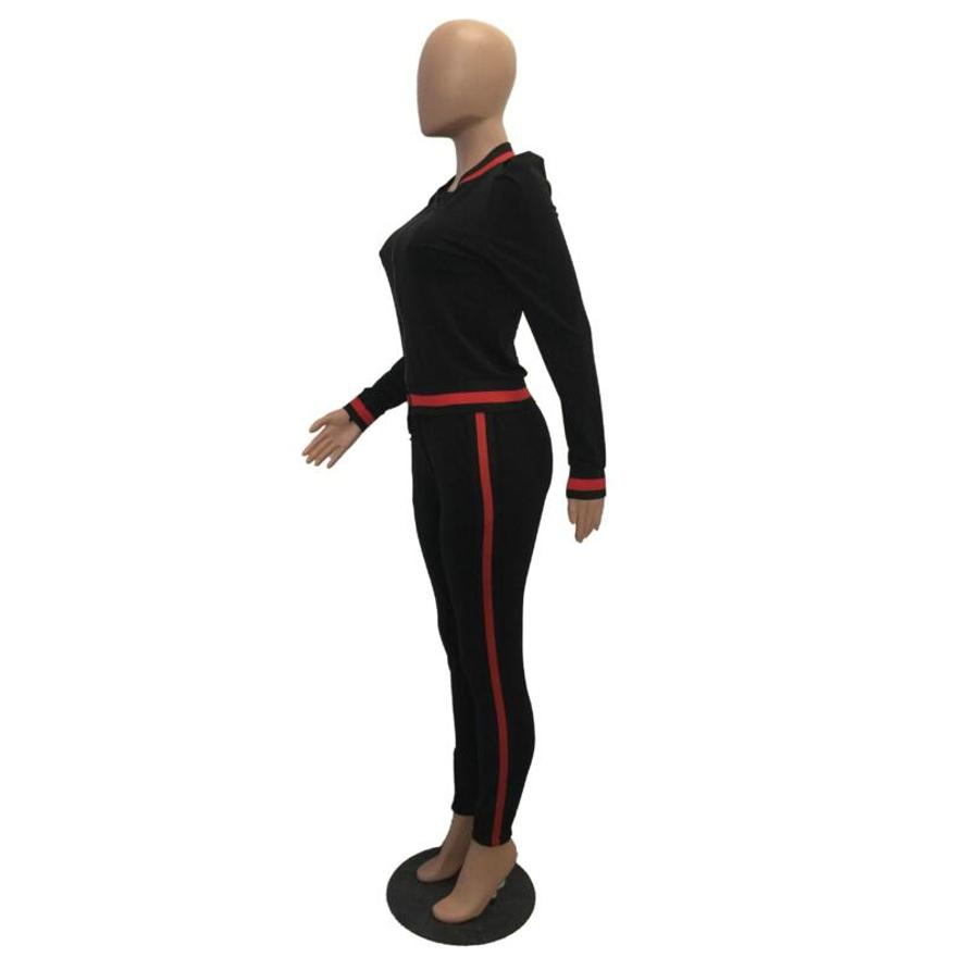 WAN XIANG YUAN Women Sportswear 2017 Autumn Long Sleeve Women 2 Piece Set Slim Pants Suits +Hooded Sets Women Suit 101715