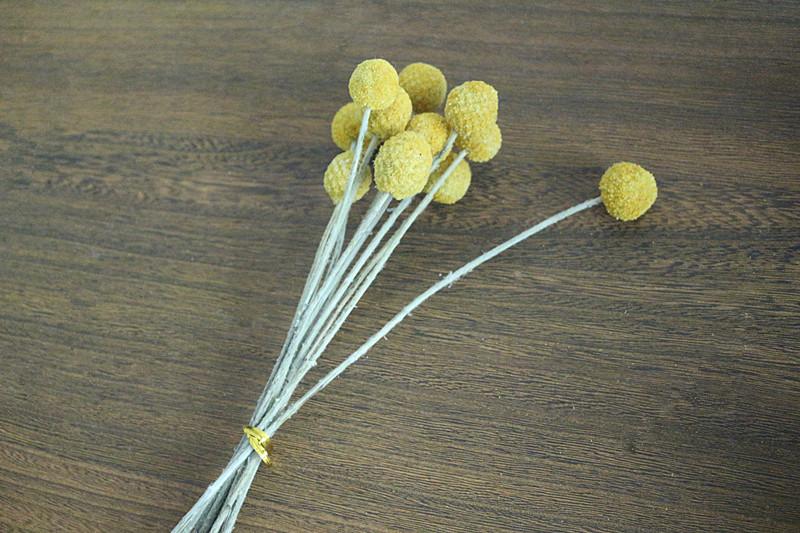 Flone Golden Ball Flower Branch Eternal Flowers Dried Flowers DIY Flower Bouquet Wedding Aceesories Home Party Gift Decor Art (12)
