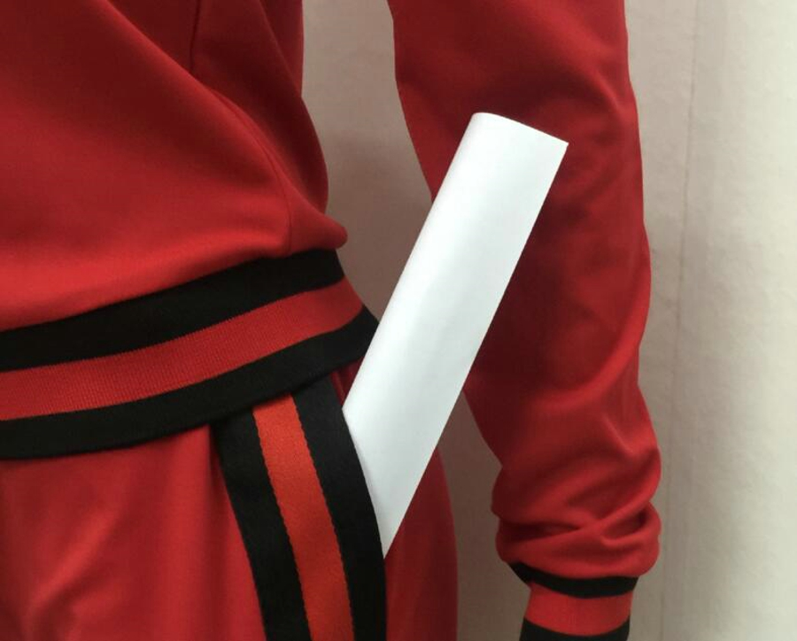 WAN XIANG YUAN Women Sportswear 2017 Autumn Long Sleeve Women 2 Piece Set Slim Pants Suits +Hooded Sets Women Suit 101716