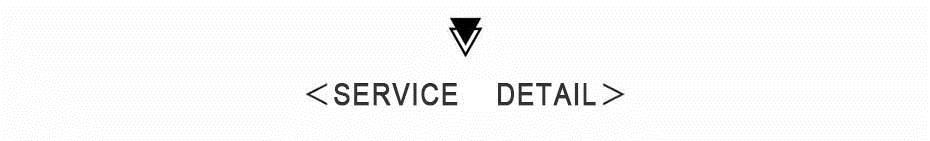 SERVICE DETAIL