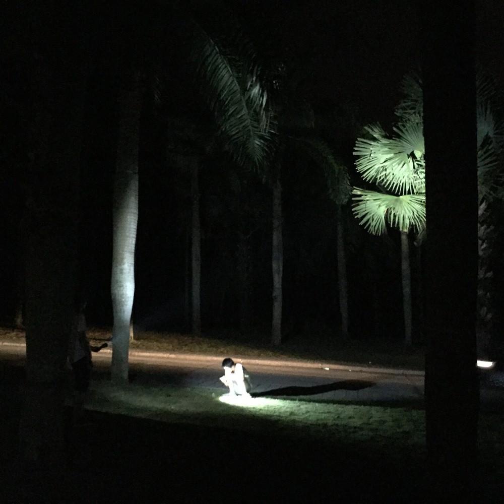 diving flashlight (8)