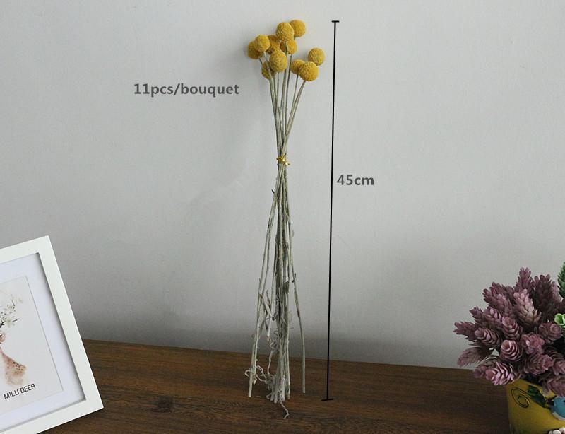 Flone Golden Ball Flower Branch Eternal Flowers Dried Flowers DIY Flower Bouquet Wedding Aceesories Home Party Gift Decor Art (9)