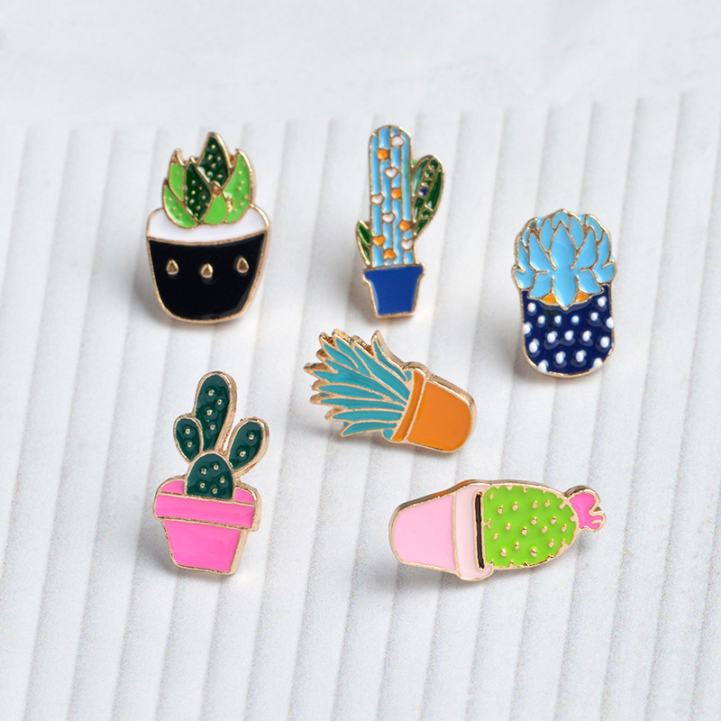 Mignon cactus miniature succulente Cactus Terrarium portable Collier plante vivante Ey