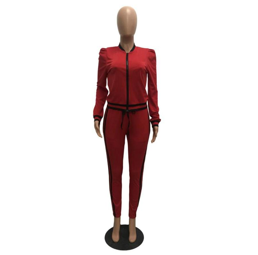 WAN XIANG YUAN Women Sportswear 2017 Autumn Long Sleeve Women 2 Piece Set Slim Pants Suits +Hooded Sets Women Suit 101713