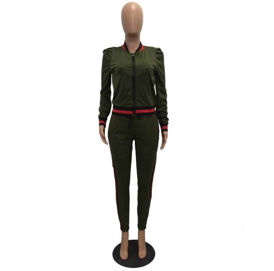 WAN XIANG YUAN Women Sportswear 2017 Autumn Long Sleeve Women 2 Piece Set Slim Pants Suits +Hooded Sets Women Suit 101711