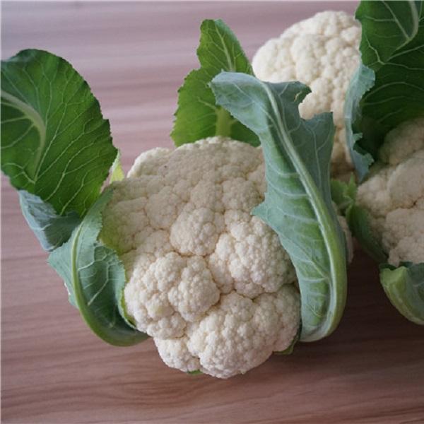 50pcs Graines Blanc Choux-Fleurs Plante en Pot Jardin Semences potag/ères Graines