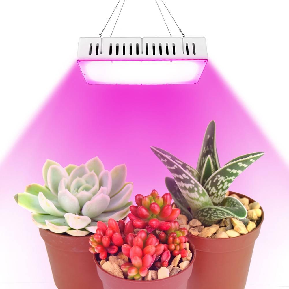 Plante D Intérieur A Faire Pousser uk stock 1500w led full spectrum usine lumière lumière d'inondation pour  l'intérieur de croissance des plantes cultivez légère croissance