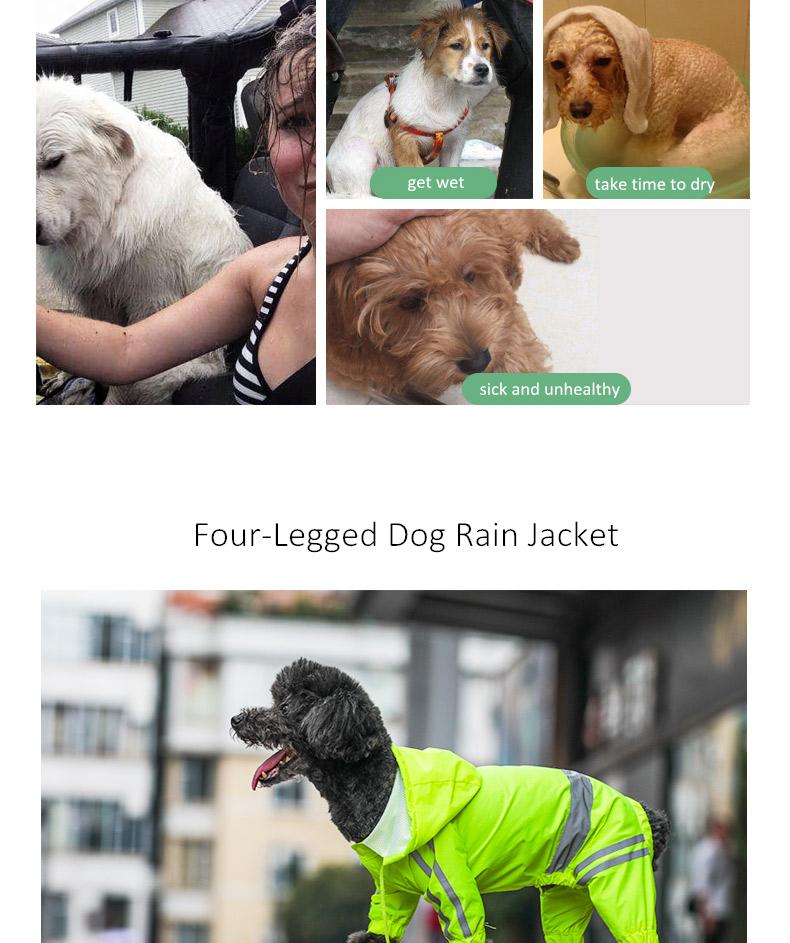 Dog Rain Coat (3)
