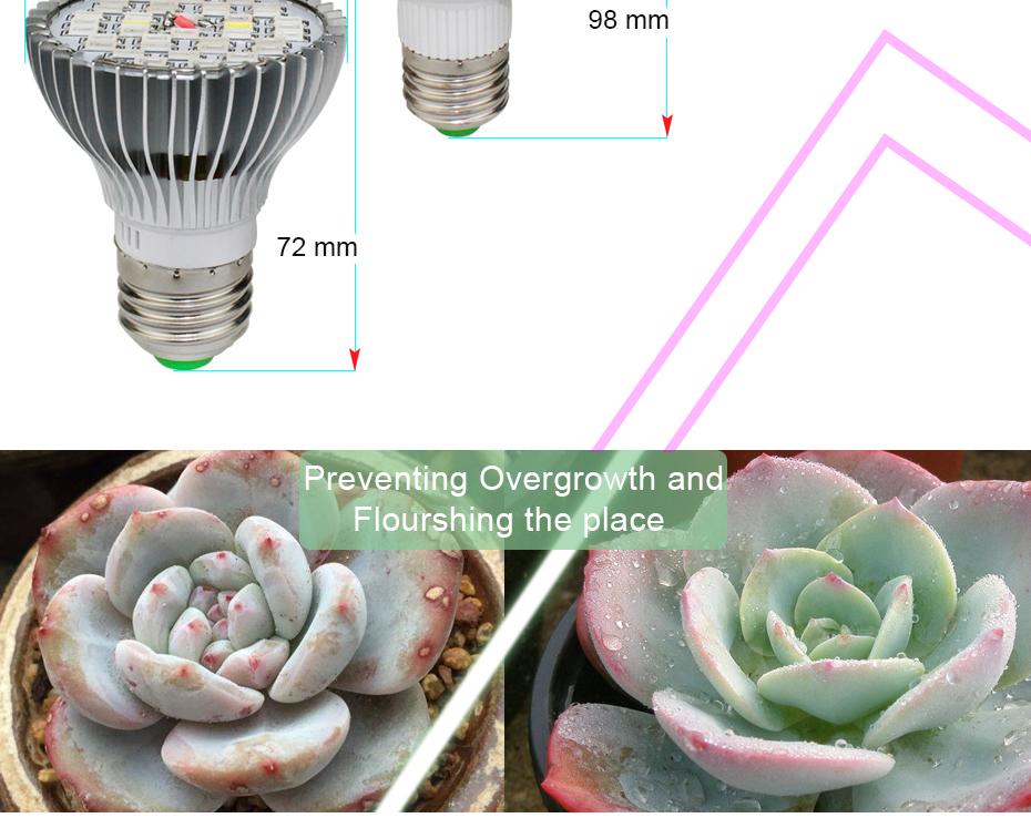 Full Spectrum Led Grow Light 110V 220V Led Plant Bulb E27 30W 50W 80W For  Seedling Vegs Growth Flower Hydroponic System Growing Bulbs 600 Watt Hps