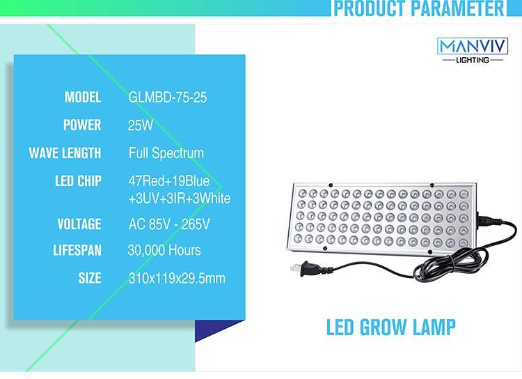 LED GLMBD-+_02