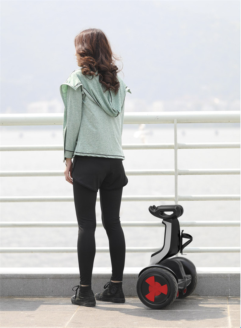 Daibot Electric Scooter Adults Two Wheels Self Balancing Scooters 10 Inch 54V 700W Smart Balance Hoverboard With BluetoothAPP (27)