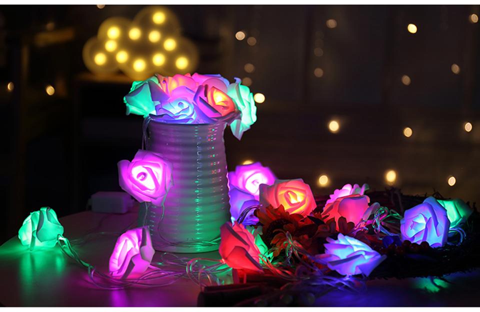 holiday lights (7)