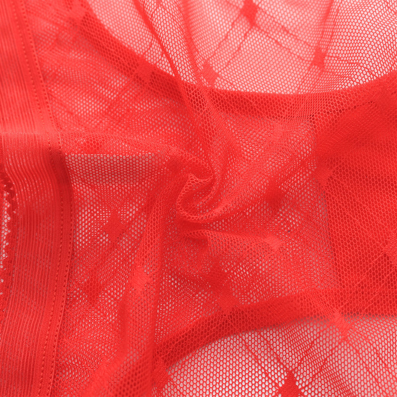 Sexy Seamless Briefs Transparent Women Underwear Panties Ultra-thin Women Briefs Lace Sexy Panty Cotton Underpants Plus Size 39 (12)