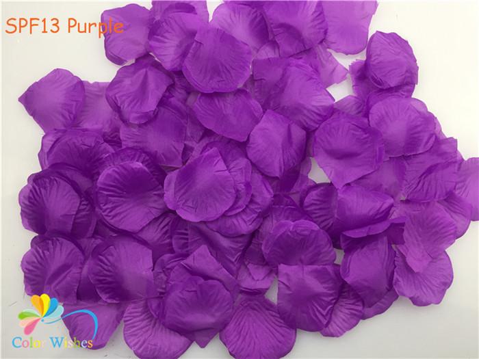 SPF13 Purple