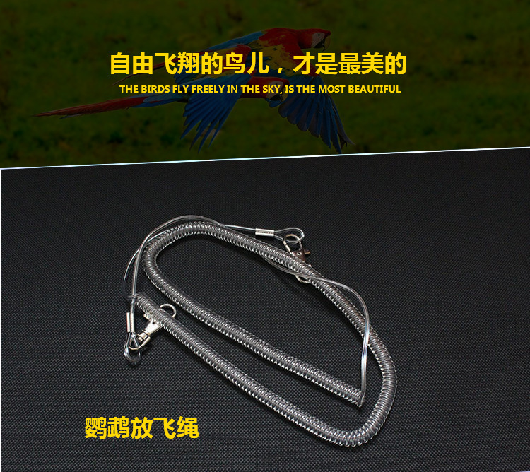 Flying Anklet Foot Ring Training Bird Tow Parrot Flight Go Out Rope
