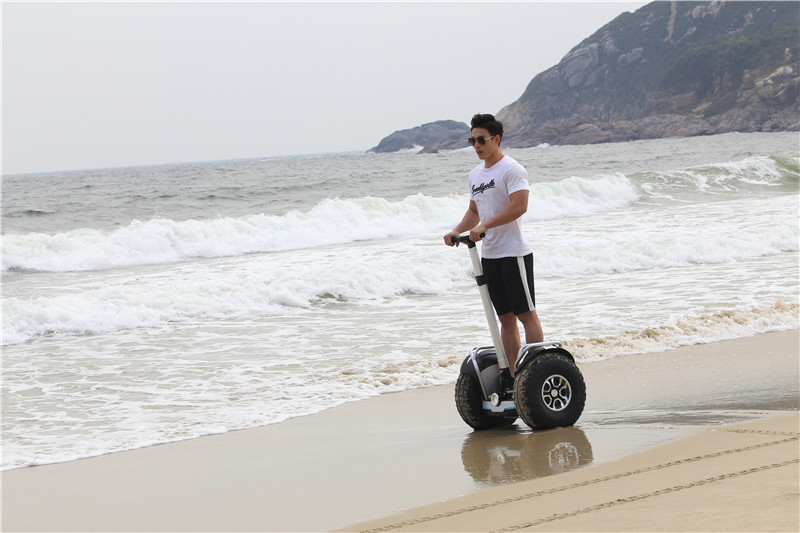Daibot Off Road Electric Scooter Self Balancing Scooters Double System 1200W2 Adults Skateboard Hoverboard With BluetoothAPP (14)