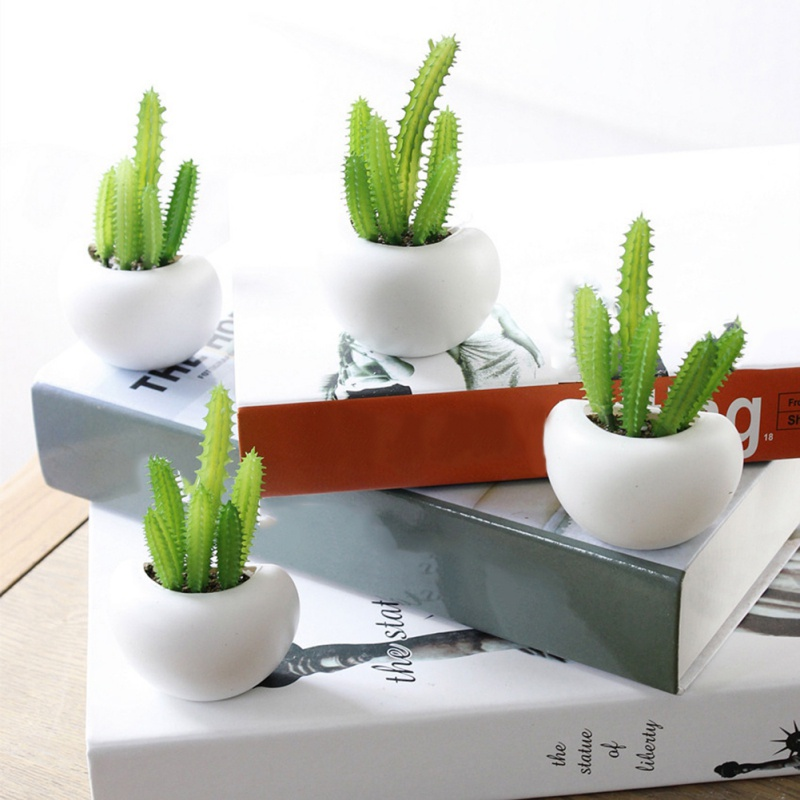Simulation Various Magnetic Stickers Succulent Potted Refrigerator Magnet Decor