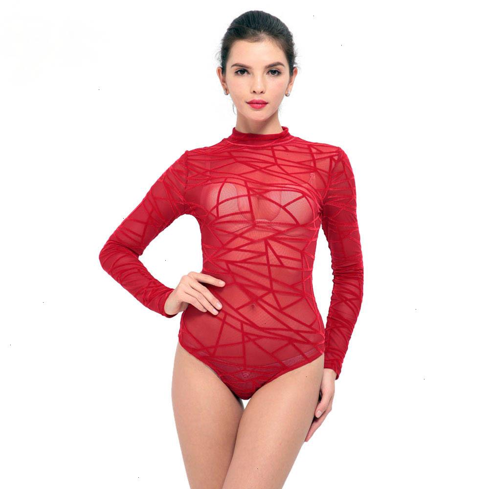 Women-See-Through-Mesh-Sheath-Bodysuits-Rompers-Lady-female-Sexy-Turtleneck-Long-Sleeve-Night-Club-Body (2)