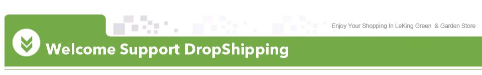 XQLJIA-DropShipping