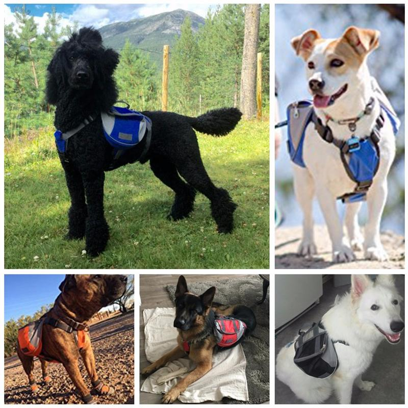 [TAILUP] Dog Harness K9 for Large Dogs Harness Pet Vest Led Collar Puppy Small Dog Leads Accessories Carrier Backpack py0025 (4)