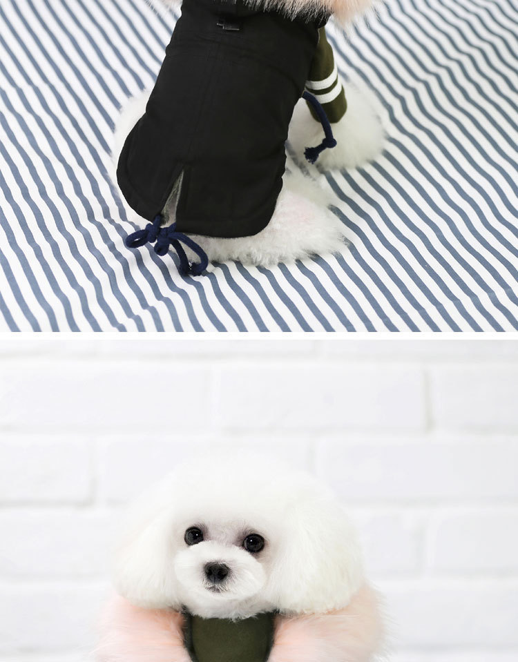 Luxury Dog Clothes (8)