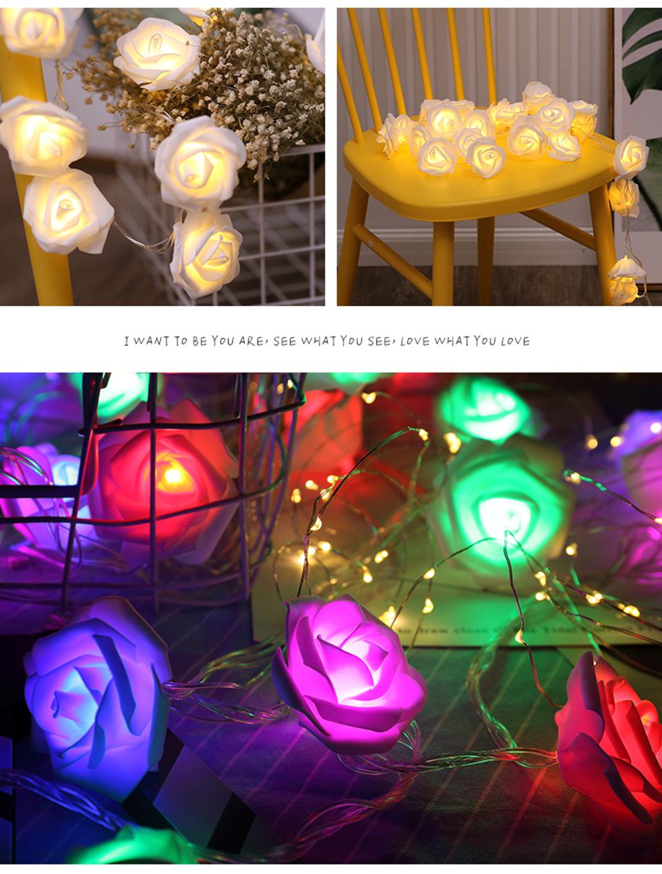 holiday lights (12)