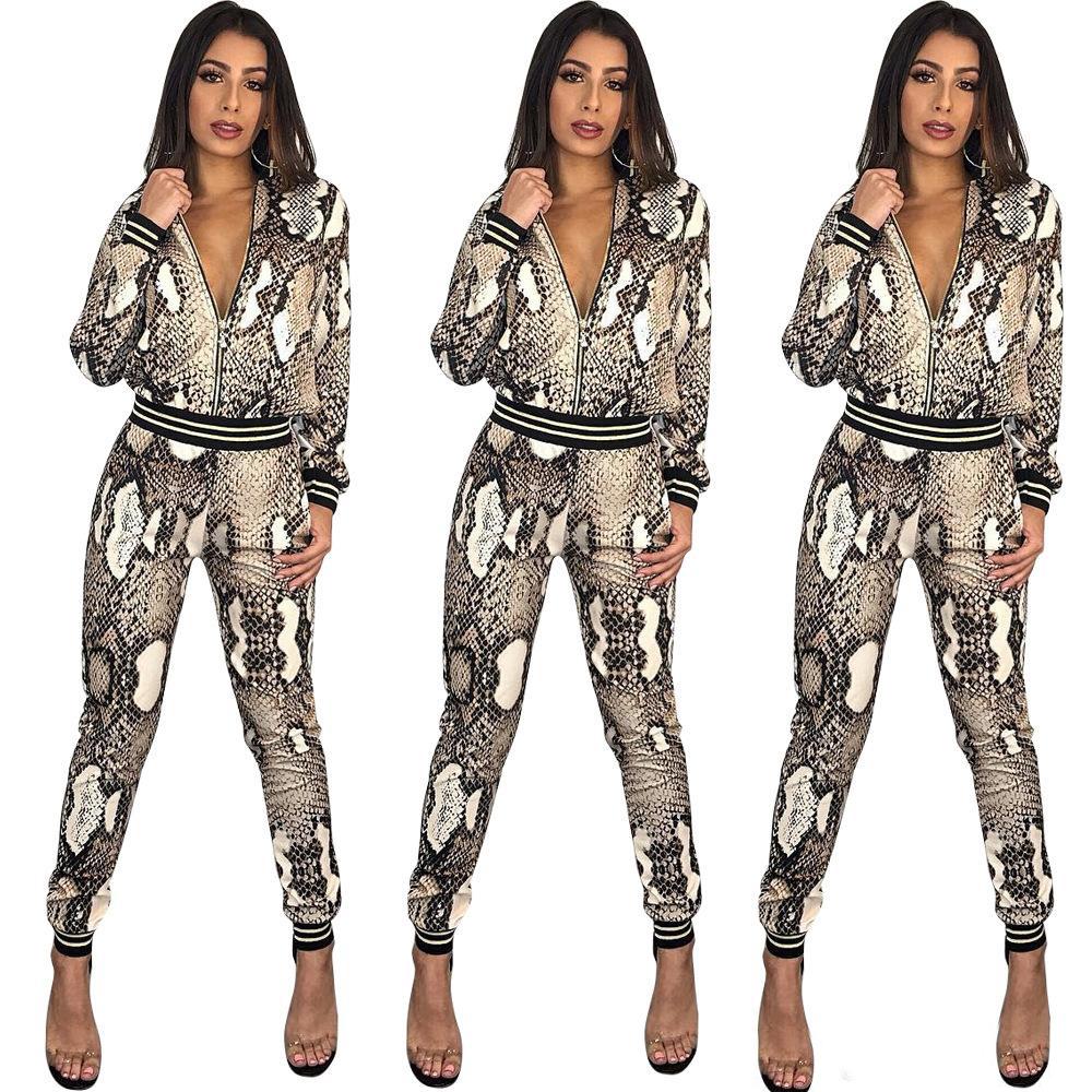 Designer Women Clothes 2 piece pants Snakeskin Print leopard jackets pencil leggings pants two pieces outfits fashion slim tracksuit