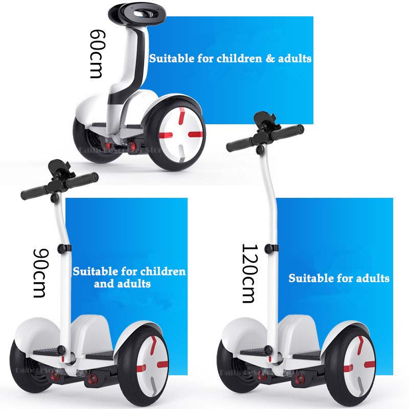 Daibot Electric Scooter Adults Two Wheels Self Balancing Scooters 10 Inch 54V 700W Smart Balance Hoverboard With BluetoothAPP (25)