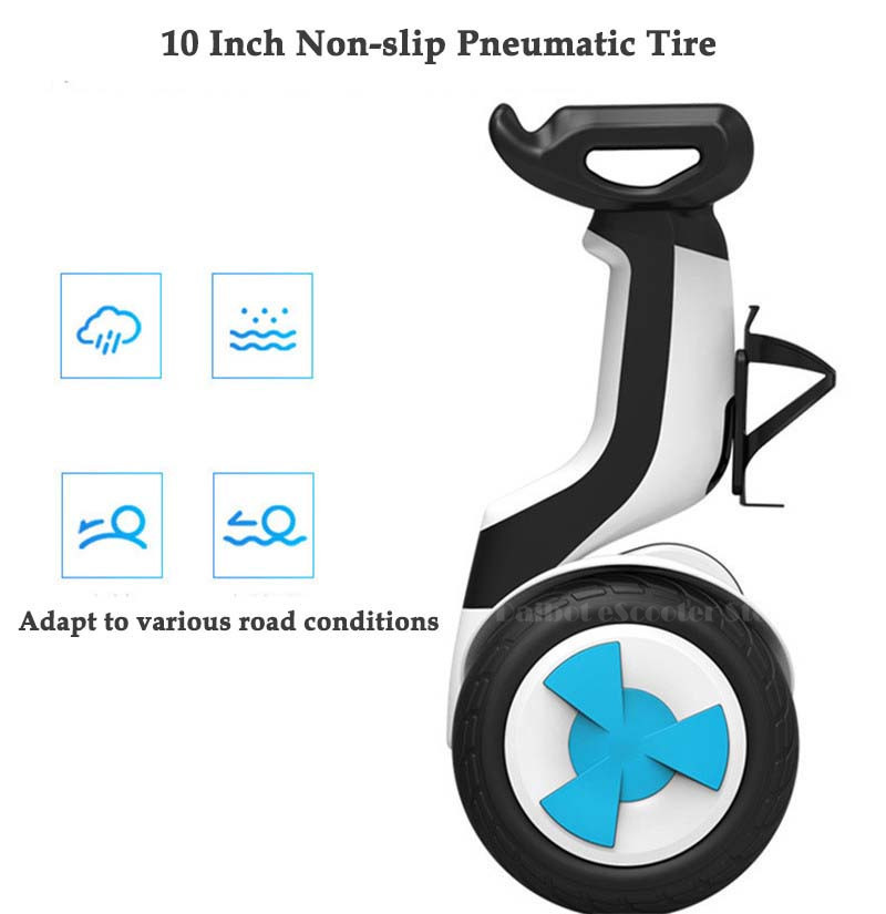 Daibot Electric Scooter Adults Two Wheels Self Balancing Scooters 10 Inch 54V 700W Smart Balance Hoverboard With BluetoothAPP (24)