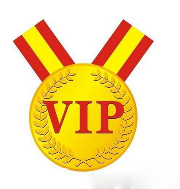 Vip for customer payment link easy payment