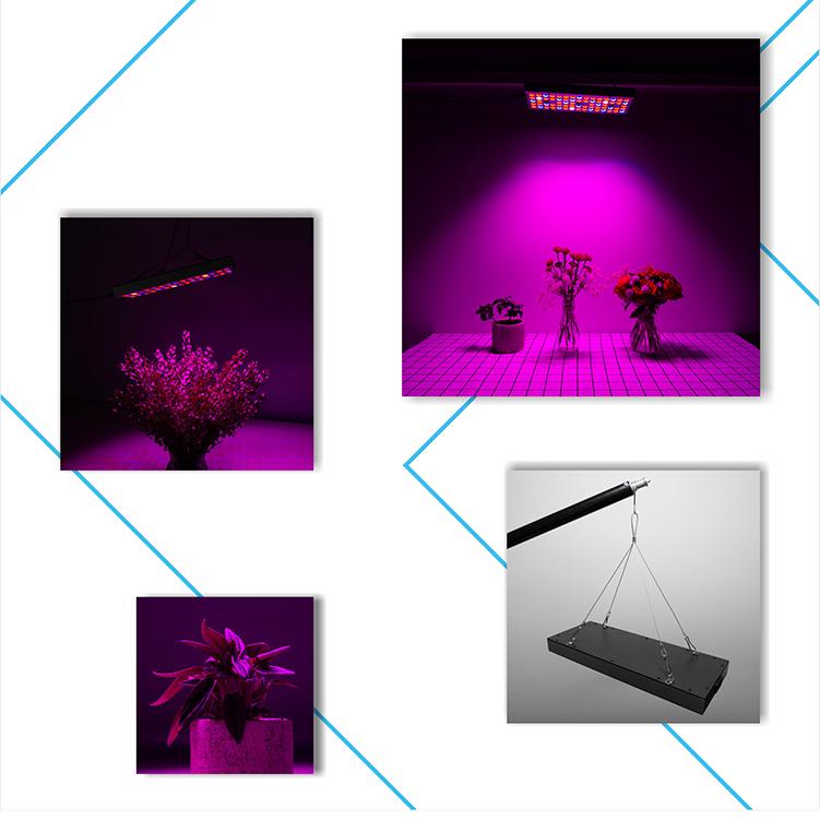 LED GLMBD-+_05