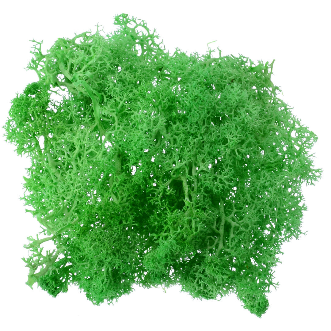 Mayitr 1pcs 10g Creative Artificial Moss Solid Color Fake Moss Grass Plant for Garden Hotel Home Party DIY Craft Decoration
