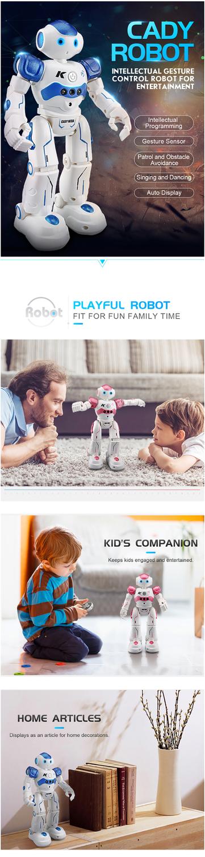 RC Robot Intelligent Programming Remote Control Robot Toy-1