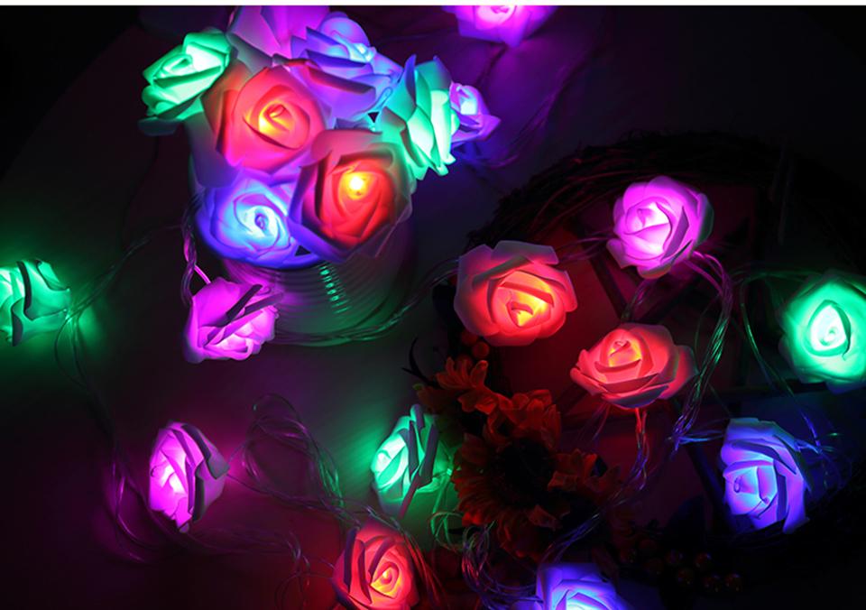 holiday lights (9)