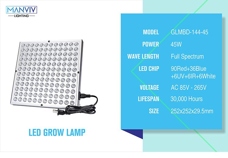 LED GLMBD-+_03
