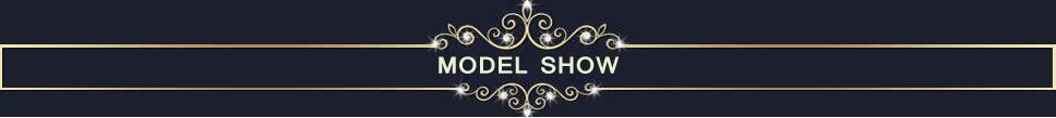 MODEL SHOWS(2)