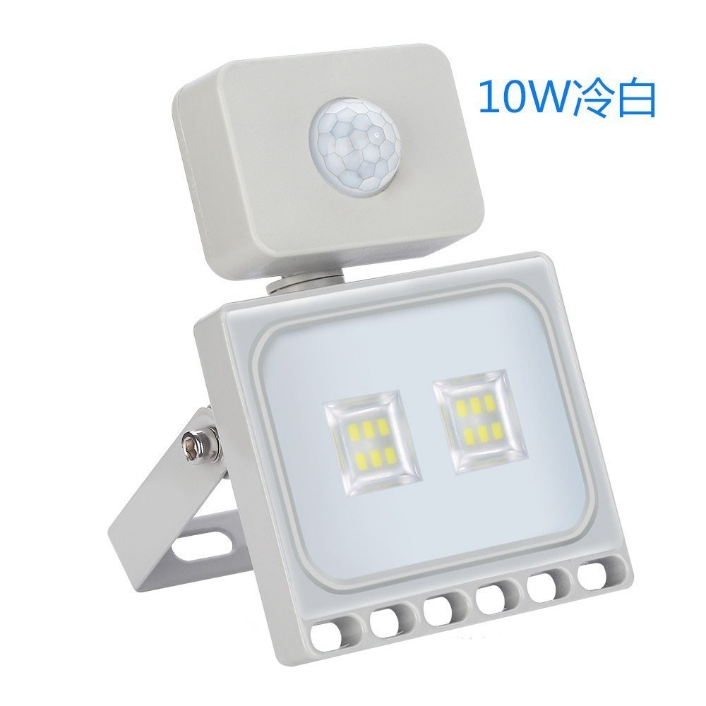 10w 30w 50w 100w LED Flood Light With Motion Sensor Waterproof AC 220V PIR LED Floodlight Outdoor Projector Lamp Spotlight